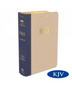 Platinum Remnant Study Bible KJV (Genuine Top-grain Leather Blue/Taupe) King James Version