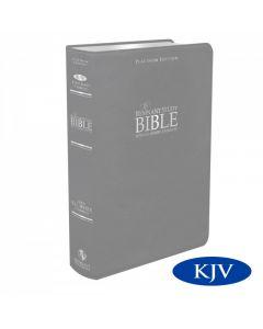 Platinum Remnant Study Bible KJV (Genuine Top-grain Leather Gray) King James Version